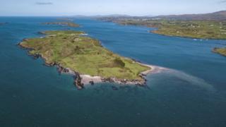 Northern Ireland Horse Island
