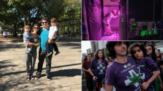 Caio Abreu e família, produção de maconha medicinal na Holanda e passeata pró-maconha medicinal no Rio