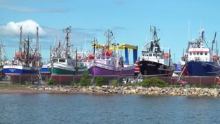 Snow crab fishing boats in dry dock in Shippagan, New Brunswick