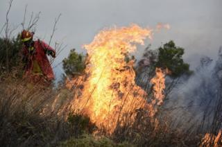 A firefighter seen trying to put out a fire in Greece