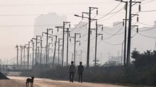 भारत बिजुली