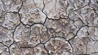 زمین خشکیده