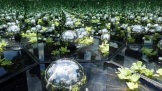 Optical illusion garden