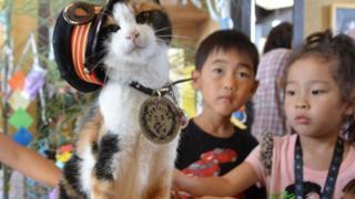 Gata Yontama com crianças japonesas