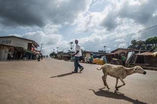 A man walks through the town as a goat runs past
