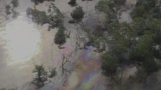 브라질 기름 유출 사고