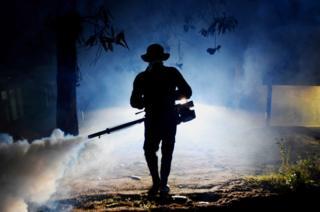 A Sri Lankan health worker sprays a neighbourhood with a fog used to ward off mosquitoes in Biyagama