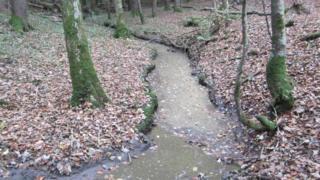 River Kird