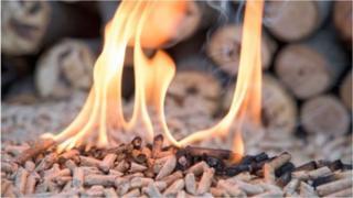 Wood pellet fire