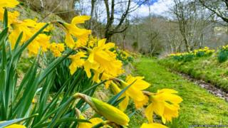 Your photos as spring begins - BBC Weather