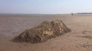 East Lindsey District Council said the Minke whale had been covered by sand to stop it getting washed back into the sea
