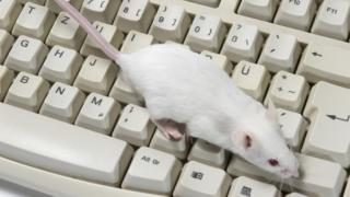 Istraživači se nadaju da bi miševi mogli da čuju nepravilnosti koje promaknu ljudskom uhu