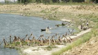 पिपली जमालपुर में गोमती पर बांध