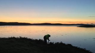 Lewis seaweed firm signs new export deal