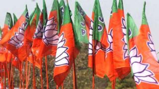 भाजपा के झंडे