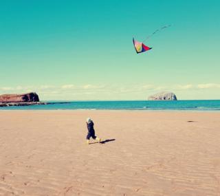 beach near North Berwick