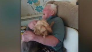 شاهد فرحة كلب بعودة صاحبه من المستشفى