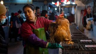 Una mujer ofrece una gallina a la venta en un mercado de Hong Kong