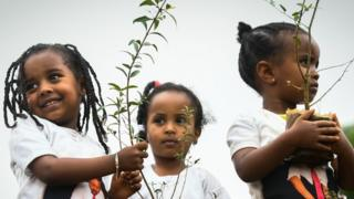 Young ethiopian girls wearing a tee-shirt depicting Ethiopia's Prime Minister Abiy Ahmed take part in a national tree-planting drive in the capital Addis Ababa, on July 28, 2019. - Ethiopia plans to plant a mind-boggling four billion trees by October 2019, as part of a global movement to restore forests to help fight climate change and protect resources. The country says it has planted nearly three billion trees already since May. (Photo by MICHAEL TEWELDE / AFP) (Photo credit should read MICHAEL TEWELDE/AFP/Getty Images)