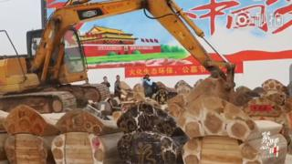 A digger demolishing caskets