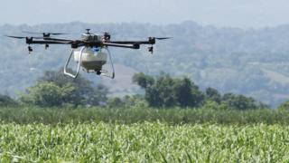 Crop-spraying drone over crop field