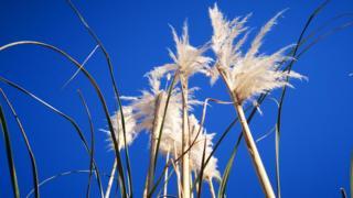 Blue skies in Dawley, in Telford