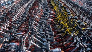 Rows of bikes in China's bike sharing scheme