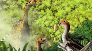 Limusaurus inextricabilis: the dinosaur ate meat as a youngster, then switched to plants