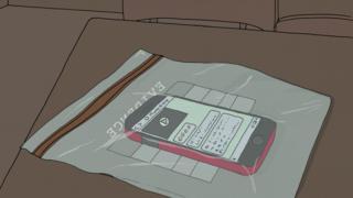 phone in bag