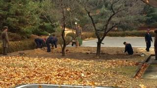 North Korean workers digging a trench at the JSA