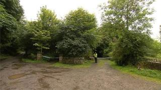 Body found in County Kildare woods