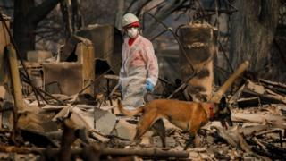 search crews look for fire victims