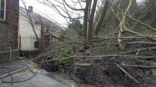 Trees fallen against the vestry of Panteg Chapel in Ystalyfera after the landslip