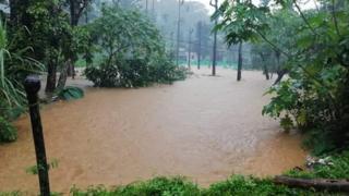 நீலகிரி மாவட்டத்தில் கன மழை, இயல்பு வாழ்க்கை பாதிப்பு