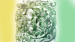 Darwin en dibujo alegórico a la evolución