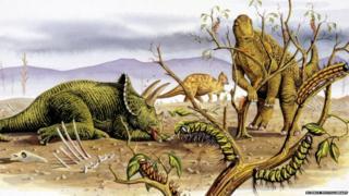 Herbivorous dinosaurs