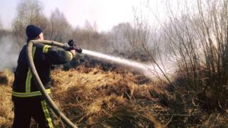 За добу рятувальникам на Київщині довелося виїжджати на пожежі 147 разів