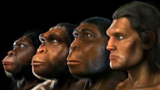 Известные предки человека