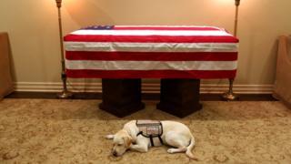 O cão Sully se deitou ao lado do caixão do ex-presidente americano George H.W. Bush, que morreu neste fim de semana aos 94 anos