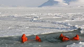 قطب شمالی