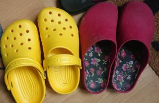 science Garden shoes