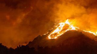 A wildfire in California