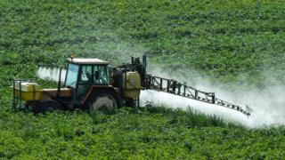 Crop-spraying in Meteren, northern France