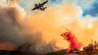 Fire-fighters are working 72-hour shifts but say it is not enough to contain the blazes
