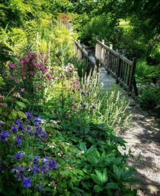 Flowers in a garden by a bridge