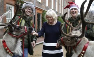The Duchess of Cornwall with two reindeers and their handlers