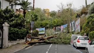 A view of a fallen tree on a road to strong winds hit October 29, 2018 in Naples, Italy.