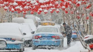 山东半岛迎春雪