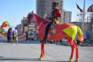 A man in Ethiopia's Mekelle city rides a horse painted in the colours of the Tigray regional flag on 19 February 2020.