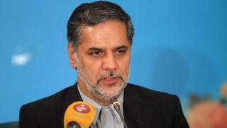 حسین نقوی حسینی